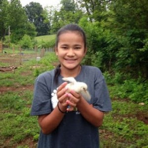 Photo May 25 catching chickens 2