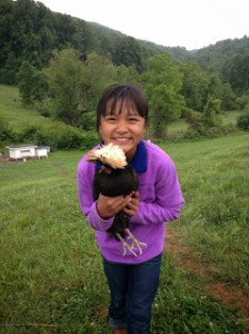Photo May 25 catching chickens Apuii